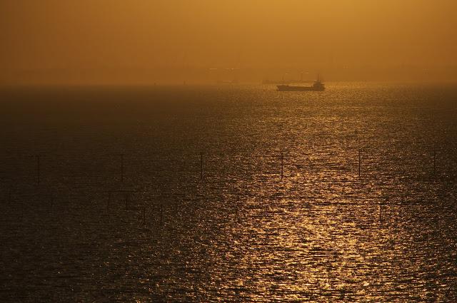 木更津の中の島大橋からの眺め
